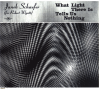 jukebox.php?image=micro.png&group=Janek+Schaefer&album=What+Light+There+Is+Tells+Us+Nothing