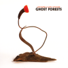 jukebox.php?image=micro.png&group=Meg+Baird+%26+Mary+Lattimore&album=Ghost+Forests