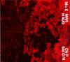 jukebox.php?image=micro.png&group=MoE+Marhaug&album=Capsaicin