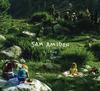 jukebox.php?image=micro.png&group=Sam+Amidon&album=Lily-O